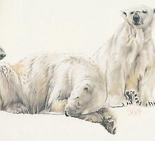 Polar Bear by BarbBarcikKeith