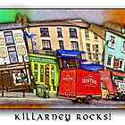 Killarney Rocks by Ted Byrne