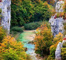 Autumn Landscape by Artur Bogacki