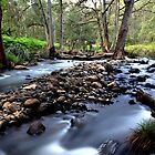 """The Head, Upper Condamine River"" by GrantRolphPhoto"