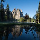Awakening - Yosemite Valley by Barbara Burkhardt