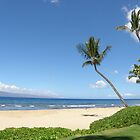 Maui Bliss by Patty (Boyte) Van Hoff