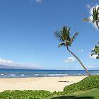 Maui Bliss by Patty Boyte
