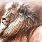 Africian  Male Lion by steve morvell