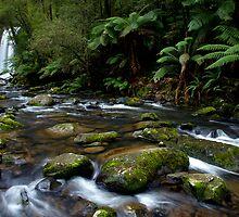 Hopetoun Falls by Cameron B