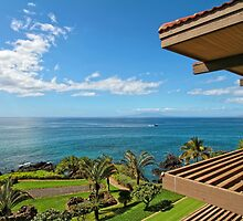 Kim Insley-Morrell, R(S) - Maui Real Estate Listings by dana723