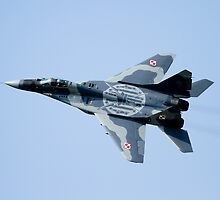 Polish Mig 29A Fulcrum by PhilEAF92
