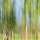 vertical trees #3 by metriognome