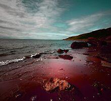 THE OCEAN IN MY BLOOD by leonie7