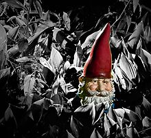 Garden Gnome within the Gray by Randall Nyhof