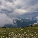 Trail Ridge Storm by Gregory J Summers