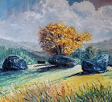 Kenmare stone circle by Roman Burgan