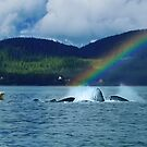The Pod @ The End Of The Rainbow by Yukondick