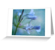 Blue Nile Iris Greeting Card