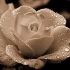 I Love You Truly by Celeste Mookherjee