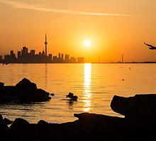 Golden Toronto Skyline at Sunrise by Georgia Mizuleva