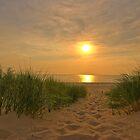 Follow the Path by Roger  Swieringa