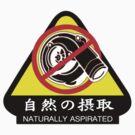 JDM - Naturally Aspirated by ShopGirl91706