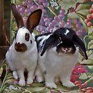 Holly and Rowan by Krys Bailey