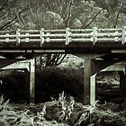 James Kirkwood Bridge, Cooerwull Road, Lithgow NSW by Deborah McGrath
