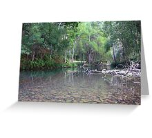 Crystal Creek ... Greeting Card