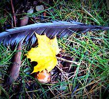 Fallen things by DelisaCarnegie