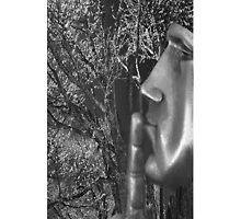 ☀ ツShh!! FACE IN THE SILENCE OF NATURE IPHONE CASE ☀ ツ by ✿✿ Bonita ✿✿ ђєℓℓσ