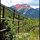 Fence At Ouray by tvlgoddess