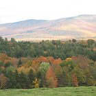 Fall in Stowe, Vermont by Rystall