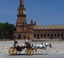 Horse and Carriage, Seville by wiggyofipswich