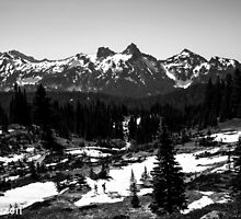 Mt. Rainier 2013 by Tim  Mezen