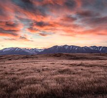 Tekapo Dawn by Brad Grove