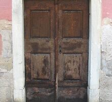 Door in Slovenia by Blonddesign