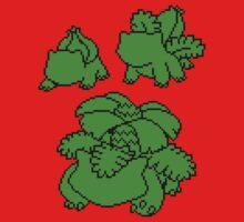 Grass Kanto Starter Silohouettes by Funkymunkey