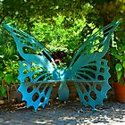 The Butterfly Bench by rosaliemcm