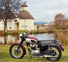 1969 Triumph Bonneville by Brett Rogers