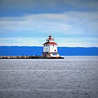 Thunder Bay Lighthouse by Rochelle Smith