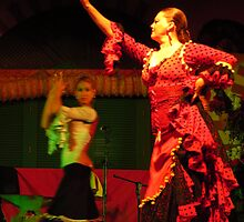 Flamenco Movement by wiggyofipswich