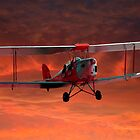 Two seater Tigermoth by jwwallace