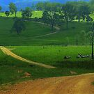 Campsite on a working cattle station by myraj
