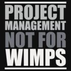 Project Management Not for WIMPS by PMMan