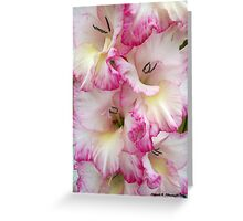 Towering Gladioli Greeting Card