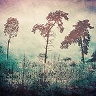 3 Trees - Vintage Grunge Landscape Art by Denis Marsili