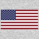 United States Flag by cadellin