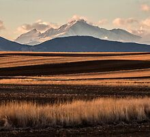 Lines And Rockies by Greg Summers