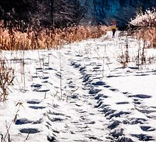 Winter Trail by Wib Dawson