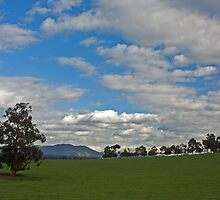 View of Mt Dandenong by rjpmcmahon