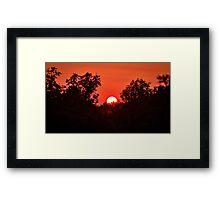 Mornings Framed Print