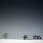 Winter Tree Skyline by eatsleepdesign