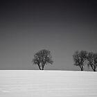 Winter Tree Skyline 2 by eatsleepdesign